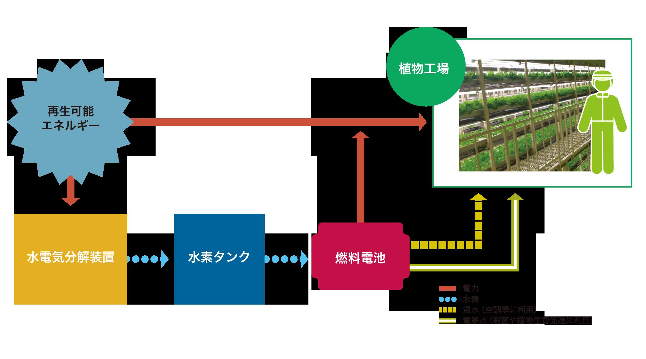2017年2月23日 第21回放送 「ミタデンの革新的な植物工場」を分かり易く解説!